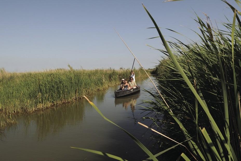 Découvrir en barque les rizières du delta de l'Ebre en @ Tina Bagué - ACT