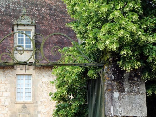 Pour les yeux comme pour les oreilles, une balade dans les jardins de la Borie  promet toujours d'être unique. (Crédit photo David Raynal).