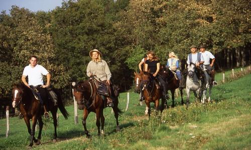 Cavaliers en lisière de bois (crédit photo LACROIX Rémy / CDT 03)
