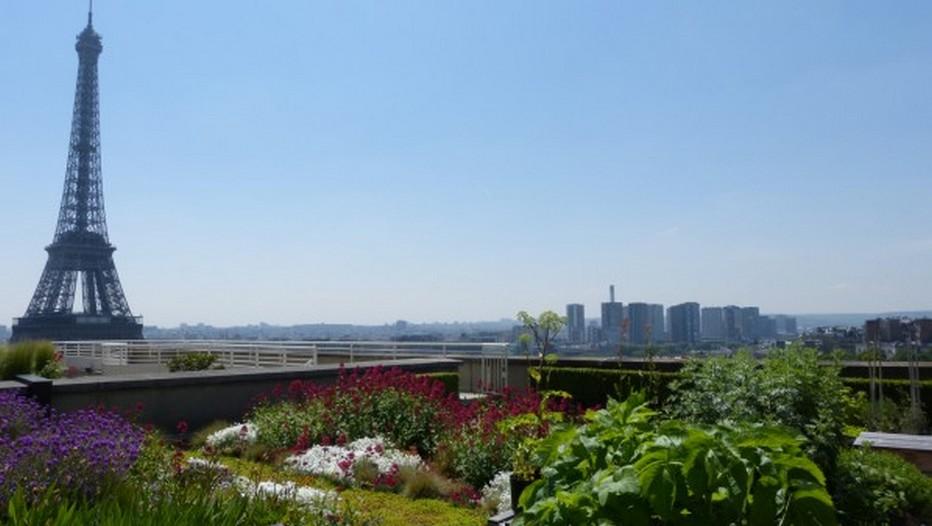 Jardins fleuris sur les toits du Palais de Chaillot, en plein centre de Paris (Photo DR)
