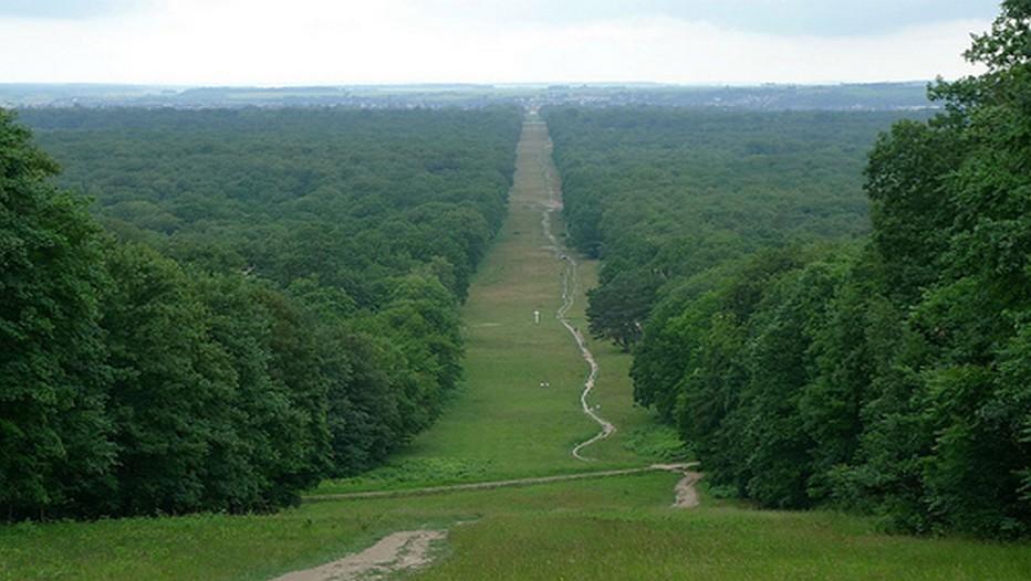 La célèbre Avenue des Beaux Monts qui accède au château de Compiègne dans l'Oise (Crédit photo DR)