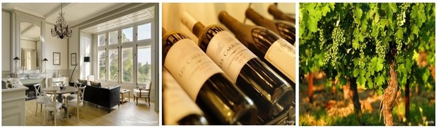 Un bar et une cave à vins proposent de s'initier à la dégustation de vins produits sur le domaine et de rencontrer des viticulteurs de la région. (Crédit photos Les Carrasses)