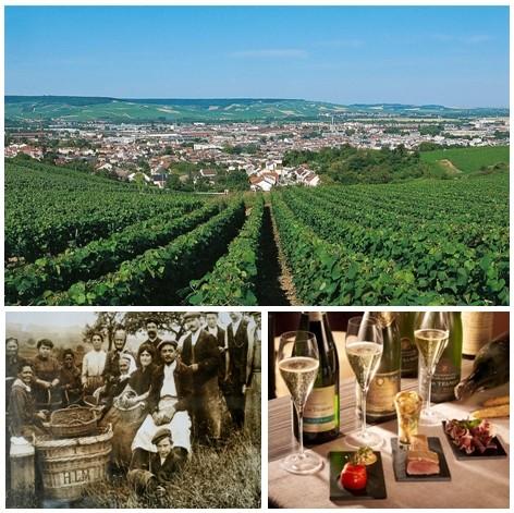 En haut : Vue d'ensemble sur les vignobles d'Epernay (© CRTCA); Les vendanges en 1912 dans les vignobles du Champagne de Telmont (© DR); Dégustation de la diversité des champagnes locaux, accompagnés d'un éventail de savoureux mets locaux.(© Catherine Gary)