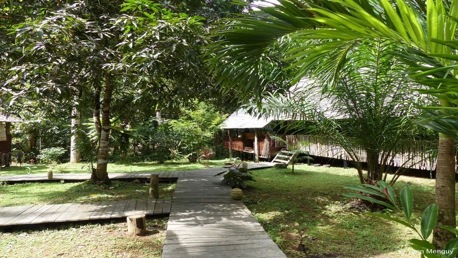 Au cœur de la fôret amazonienne, au bord du fleuve Kourou, le « Wapa Lodge »  est  un vrai paradis pour s'évader hors du temps.(Crédit photo Yann Menguy)