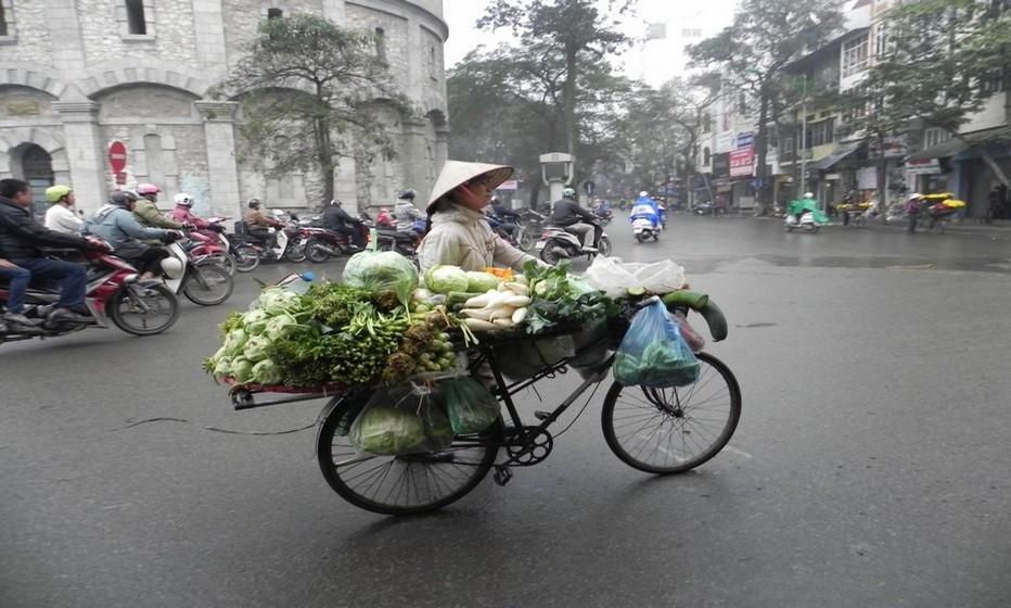 Il est courant de rencontrer en pleine ville d'Hanoï ces vélos chargés de légumes cultivés dans les campagnes avoisinantes (Crédit photo www.monique-abellard.fr)