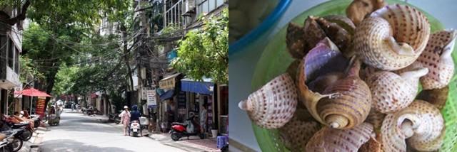 Dans le quartier de la gare centrale, nous nous sustentons dans un restaurant haut en couleur,  Je commande des escargots de rizière à la banane verte et aux tranches de tofu frites, dans une sauce au curcuma frais, bien relevée. ( Crédit photos Yves Rinauro)
