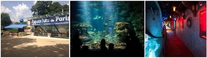 Afin de faire découvrir l'ïle de Rodrigues aux Parisiens, et à l'occasion de la fête des mères, le 30 et 31 mai l'office de tourisme de l'ïle fait son show à l'Aquarium de Paris. (Crédit photos DR)