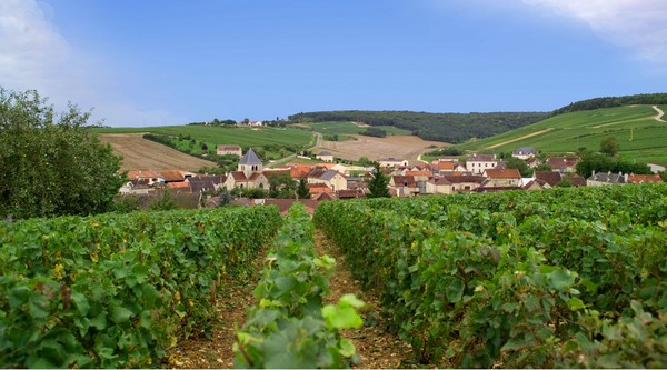 Balnot s/ Laignes,  (village limitrophe aux Riceys) où se trouve le Domaine Gremillet. A découvrir sur la Route du Champagne  © DR