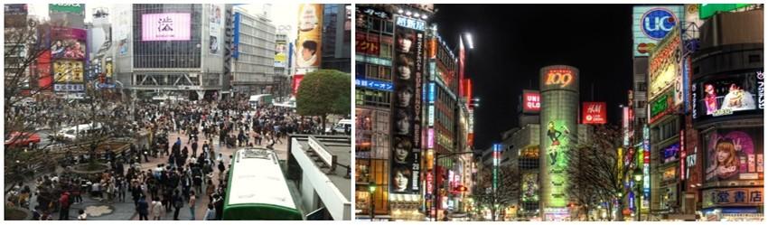 Tokyo la capitale .Entre l'une des gares les plus fréquentées de la ville et des rues commerçantes animées, des milliers de touristes et locaux se croisent jusque tard dans la nuit. (Crédit photos Mathis Cros)