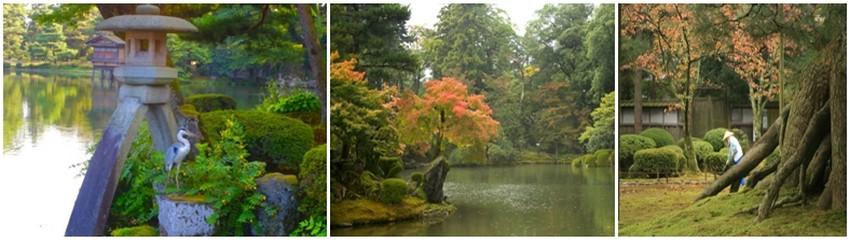 le Kenroku-en, jardin de la période Edo  s'intègre dans un vaste espace vert au centre de la ville. (Crédit Photos Mathis Cros)