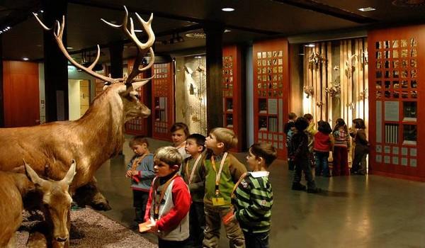 Le Musée national d'histoire naturelle propose aux enfants et aux adolescents une approche insolite de l'histoire naturelle, de l'évolution et de la biodiversité . (© visitluxembourg.com)