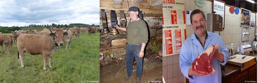 De gauche à droite :  L'automne marque la fin de la transhumance. Les troupeaux ont quitté les estives dans l'attente du prochain printemps ; Visite de l'exploitation de Christian Bonal éleveur de bœuf fermier d'Aubrac à Saint Côme d'Olt; la viande un goût et une tendresse incomparable vendue par les meilleurs artisans bouchers comme la maison Lucien Conquet à Laguiole.  © Yann Menguy