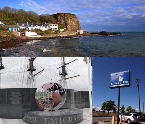 En haut, vue d'un joli petit village du Sud-est de l'Irlande © DR; en bas à gauche : Mémorial pour le émigrants à New Ross © Catherine GaryC.G ;  Enseigne du restaurant Silver Fox à Kilmore Quay © DR