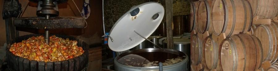La filière fermière et artisanale représente 16% de la production bretonne soit environ 70 000 hl. ©  1 et 2 DR,  3/ Fûts de Pommeau chez Guy Le Lay (©  www.pommeaudebretagne.com)