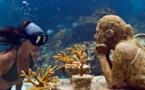 Mexique  -  Séjour culturel et sportif de Cancun à Los Cabos !
