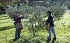 Italie, quelques secrets qui font l'excellence de Molini