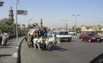 Egypte : Tourisme au Caire après la révolution