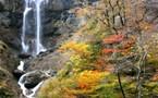 Japon, balade en terre samouraïs