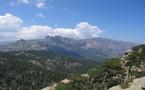 Ollandini, leader des vacances en Corse !