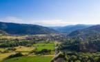 Entre la vallée de Munster et les villages de Riquewihr et Ribeauvillé, l'Alsace révèle sa belle diversité