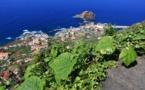 Madère encourage le tourisme avec l'adoption d'un « couloir vert »