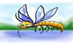 Voyage 2.0 :  Vigilance-moustiques.com prévoit la saison des insectes diptères dans le monde.