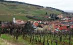 Route des vins d'Alsace : 60 ans et pas une ride !