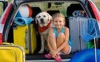 Automobile :   Petit précis pour rouler en toute sécurité et sérénité !