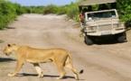 Botswana, safari dans un jardin d'Eden !