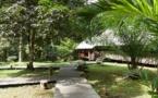 Guyane française : Séjour zen au « Wapa Lodge » sur le fleuve Kourou.