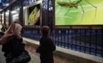 Paris : La nature s'expose en gros plan