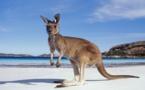 Le Festival International de Géographie 2015 s'envole au pays des kangourous.
