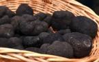Marché aux truffes de Sarlat : à la poursuite du diamant noir  !