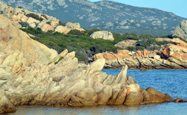 Corse du Sud -  Murtoli -  pour vivre heureux, vivons cachés !