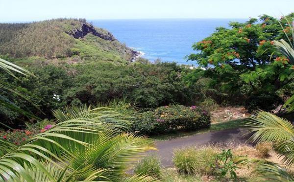 Ile de La Réunion, le Palm Hôtel : Une Escale de Rêve