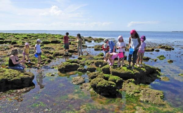 Les 4 Vents à Noirmoutier, un village de vacances exemplaire !