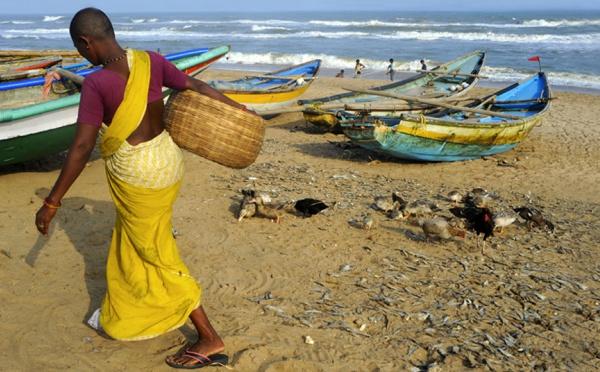 Inde : A l'écart des grands circuits, l'Orissa cultive ses trésors