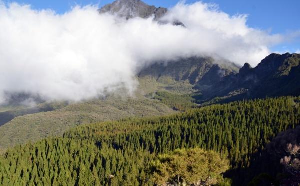 """La Réunion célèbre les 10 ans de ses """"pitons, cirques et remparts"""" au patrimoine de l'Unesco"""