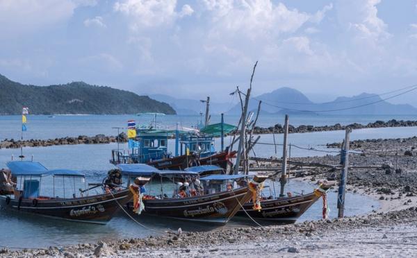 Focus sur.... Koh Phangan et Koh Samui - îles  paradisiaques du bien-être et du bien-manger -